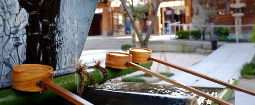 鎮守の森で学ぶ、持続可能なビジネスのエッセンス。京都・八幡市の体験プログラム(延期)